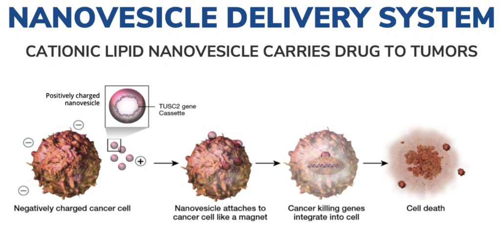 Genprex's unique, proprietary non-viral vector delivery system